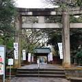 写真: 上野恩賜公園 181023 06