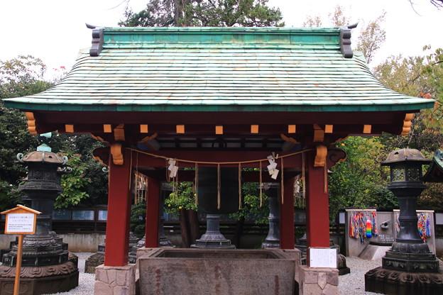 上野恩賜公園 181023 09