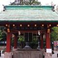 写真: 上野恩賜公園 181023 09