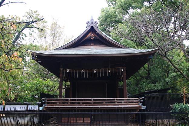 上野恩賜公園 181023 10