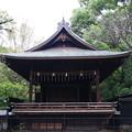 写真: 上野恩賜公園 181023 10