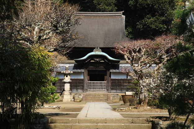 円覚寺 190220 10