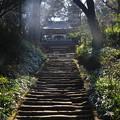 写真: 浄智寺 190220 02
