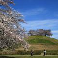Photos: さきたま古墳公園 190405 07