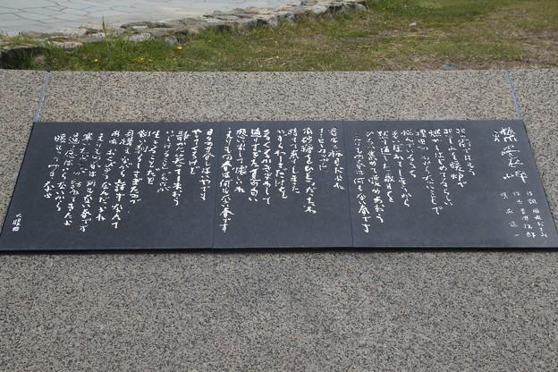 襟裳岬 190515 03