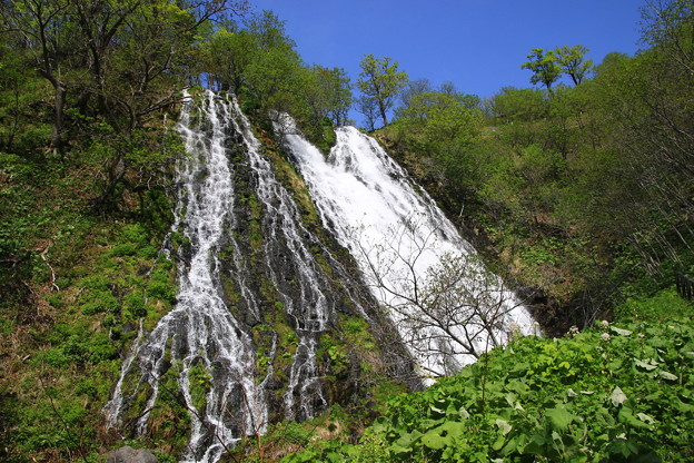 オシンコシンの滝 190518 01