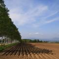 Photos: 帯広の畑地 190519 01