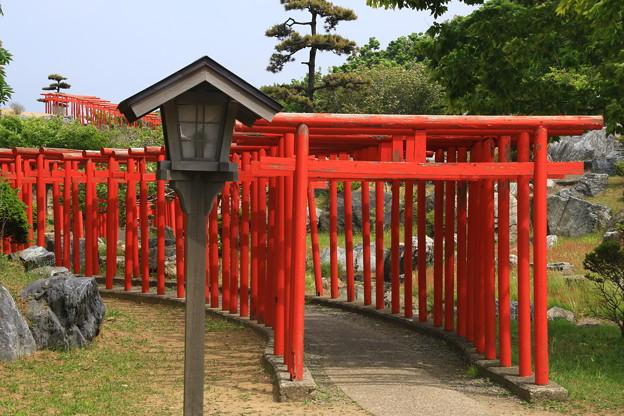 高山稲荷神社 190524 05