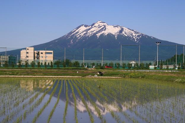 弘前からの岩木山 190525 01