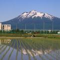 Photos: 弘前からの岩木山 190525 01