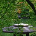 Photos: 旧古河庭園 190928 05