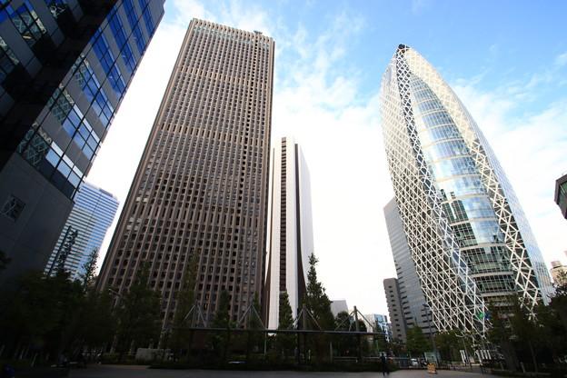 西新宿高層ビル群 191015 02