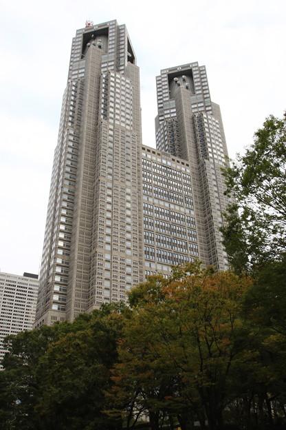 西新宿高層ビル群 191015 05