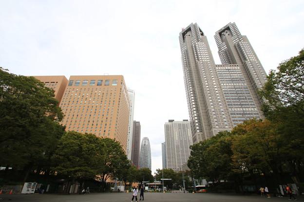 西新宿高層ビル群 191015 06