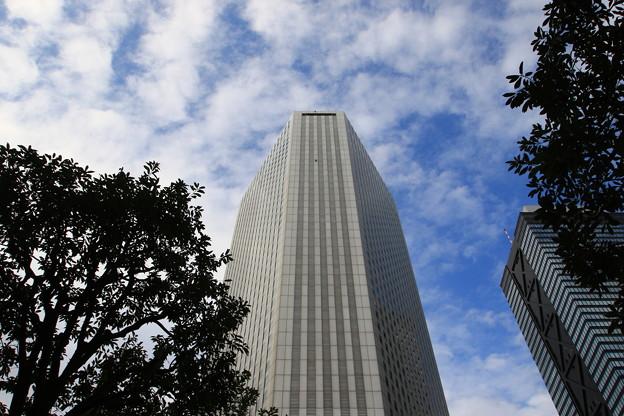 西新宿高層ビル群 191015 07 スパイダーマン!