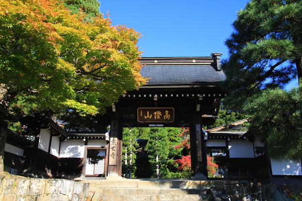 東山寺院群 191104 03