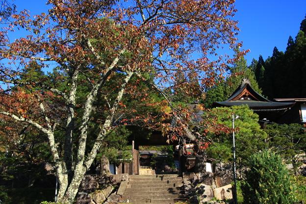 東山寺院群 191104 08