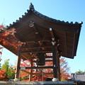 Photos: 能仁寺 191130 04