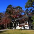 Photos: 能仁寺 191130 09