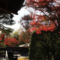 Photos: 能仁寺 191130 12