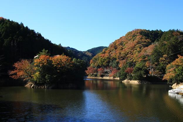 Photos: 鎌北湖 191130 01