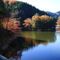 Photos: 鎌北湖 191130 02