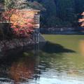 鎌北湖 191130 04
