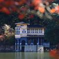 鎌北湖 191130 06