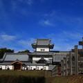 金沢城公園 191107 03