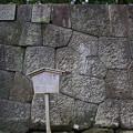 金沢城公園 191107 05