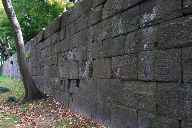 金沢城公園 191107 06
