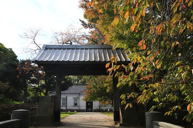 金沢城公園 191107 10