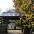 Photos: 金沢城公園 191107 10