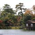 Photos: 兼六園 191107 04