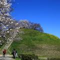 Photos: さきたま古墳公園 200325 03