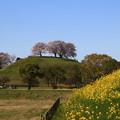 さきたま古墳公園 200325 06