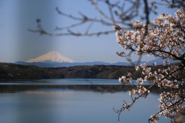 狭山湖 200326 01
