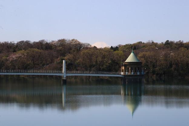 狭山湖 200326 02