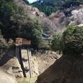Photos: 鎌北湖 200326 02