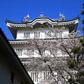 Photos: 忍城 200326 02