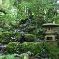 Photos: 金沢 尾山神社 180518 06