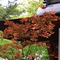 Photos: 吉見観音(安楽寺) 200528 08