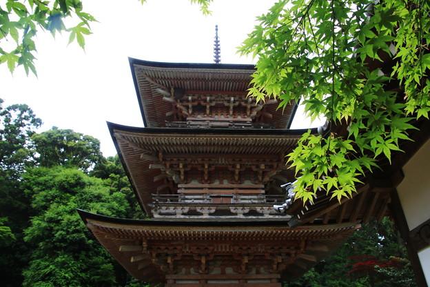 吉見観音(安楽寺) 200528 13