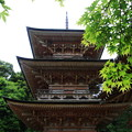 Photos: 吉見観音(安楽寺) 200528 13
