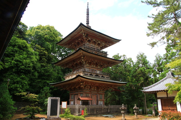 Photos: 吉見観音(安楽寺) 200528 14