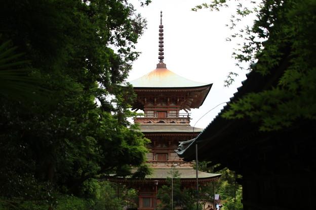 吉見観音(安楽寺) 200528 15