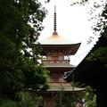 Photos: 吉見観音(安楽寺) 200528 15