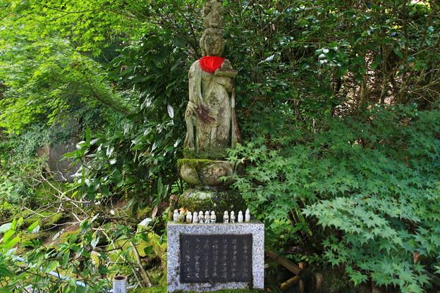法雲寺 200903 04