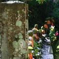 法雲寺 200903 05