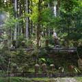 法雲寺 200903 06
